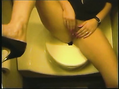 Banging my wife in the toilet